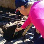 Giardinaggio&Orticoltura